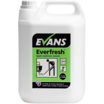 A103EEV2 EVERFRESH APPLE T. CLEANER 2X5L